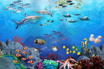 Entrada al acuario SEA LIFE Sydney