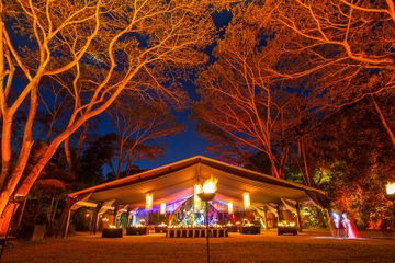 Cena en el Flames of the Forest en Cairns