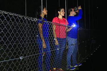 Hanging Bridges Nighttime Canopy Tour at Mistico Park