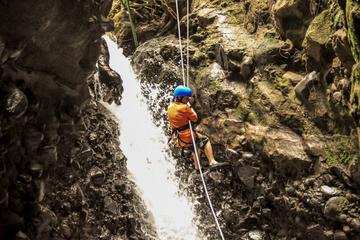 Spider Monkey Canyon