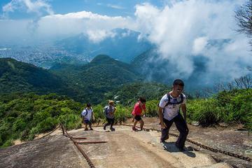 Pico da Tijuca Small-Group Hiking Tour