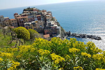 Authentic Cinque Terre Tour