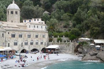 Portofino private boat tour