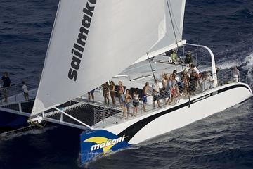 Crucero en catamarán de lujo desde...