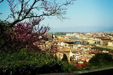 Florence Walking Tour with Ice-Cream or Chocolate and a Multimedia ...