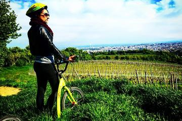 Small-Group Wachau Bike Tour with Wine Tasting from Vienna