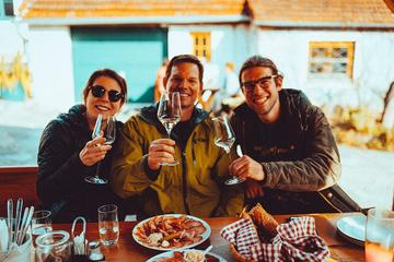 Small-Group Wachau Bike Tour with Wine-Tasting from Vienna