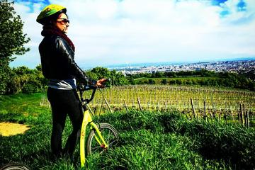 Vineyards of Vienna Downhill Scooter...