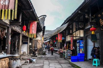 Full-Day Private Tour of Diaoyu...
