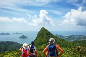 4-Hour Group Hiking Tour: High Junk Peak And Clear Water Bay Discovery in Hong Kong
