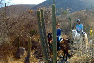 Oaxaca Discovery Overnight Horseback...