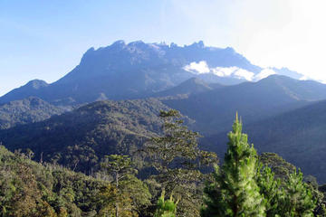 Kinabalu Park & Poring Heiße...