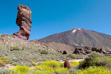 El Teide National Park Half-Day Tour