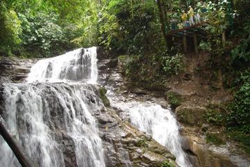 Veragua full plus Tortuguero Canals tour
