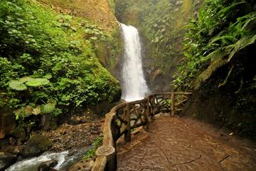 Waterfall Gardens plus Dota coffe tour