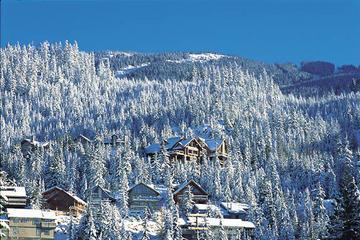 Privat rundtur: Dagsutflykt till Whistler från Vancouver