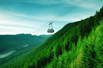 Day Trip Private Tour: Capilano Suspension Bridge and Grouse Mountain near Vancouver, Canada