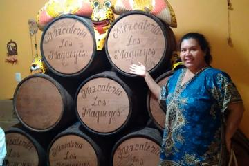 Mezcal Distillery Day Trip from...