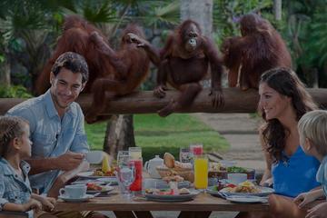 Breakfast with Orang Utan and Ubud...