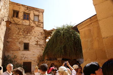 DAY TOUR TO ST CATHERINE MONASTERY FROM SHARM EL SHEIKH