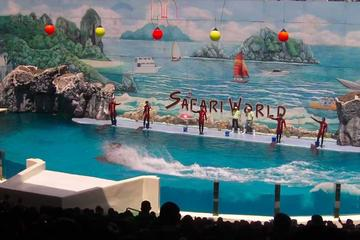 Safari World and Marine Park Admission from Bangkok