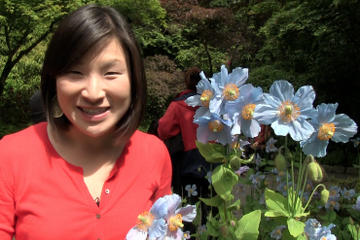 Book Butchart Gardens Tour from Victoria on Viator