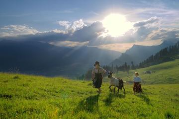 Private Tour: Interlaken Day Trip...