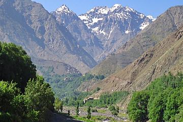 Excursión de un día en grupo por las Montañas del Atlas incluido el...