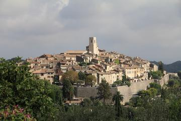 Private Provence Tour from Nice: Tourettes sur Loup, Gourdon, Grasse