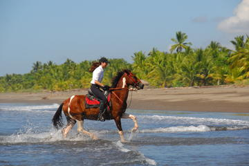 Horseback Riding Adventure From Quepos