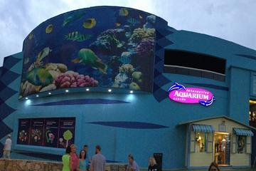 Cancun Interactive Aquarium Admission Ticket