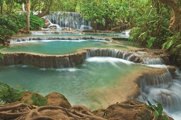 Kuang Si Falls Chicken and Bamboo Sticky Rice Picnic Full Day Tour...