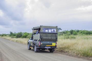 2-Day Bushveld Safari Guided Tour...