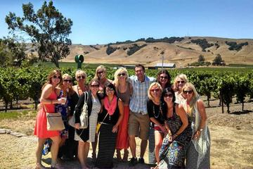 Daily Napa Wine Tasting Tour From San Francisco