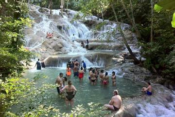 Dunn's River Falls and Jamaican Sightseeing Tour