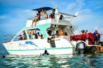 Half Day Snorkeling Catamaran Tour in...