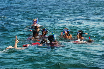 Snorkeling Tour for small groups