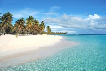 Visita a la isla Saona desde Punta Cana