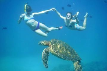 Lanai Snorkel Adventure