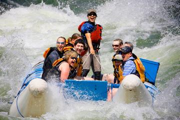 Day Trip Full-Day Thompson River Motorized Rafting Tour with Lunch near Lytton, Canada