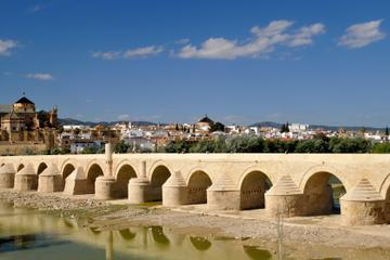 2-tägiger Córdoba-Trip von Sevilla (einschließlich Medina Azahara...