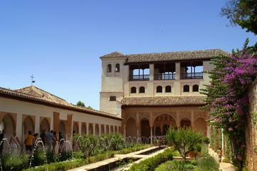 Escursione della spiaggia di Malaga: tour saltafila ad Alhambra e dei