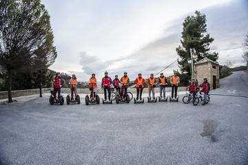 Evite las colas: Tour a pie por la Alhambra de Granada con tour en...