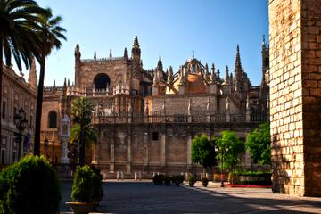 Excursão privada: passeio de um dia por Sevilha saindo de Granada