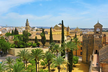 Excursión de un día desde Sevilla a Córdoba, con entrada sin colas a...