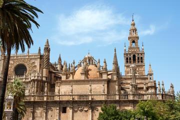 Gita di una giornata a Siviglia con partenza da Granada