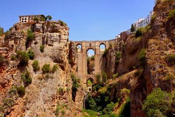 Gita giornaliera a Ronda da Siviglia: degustazione di vini, arena