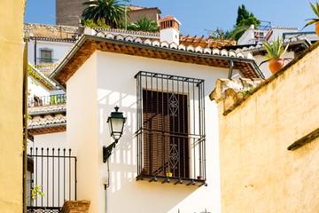 Historische Besichtigungstour in Granada