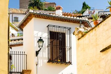 Tour panoramico alla scoperta della storia di Granada