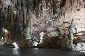 Visita privada: excursión de un día a la Costa Tropical y las Cuevas...